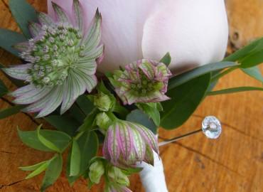 Groom's butonhole flowers