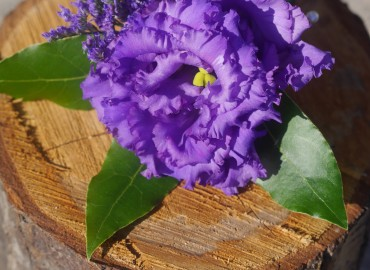 Lisianthus buttonhole
