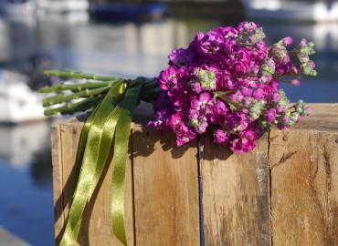 Purple stocks bouquet