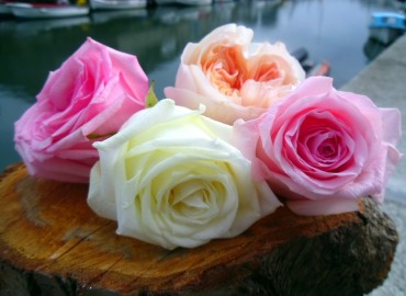 Roses for the bridesmaids' hair