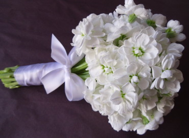 White stocks bouquet