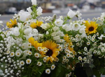 Bloom14 271