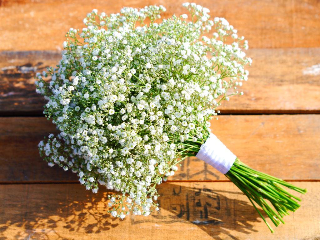 Gypsophilla bouquet